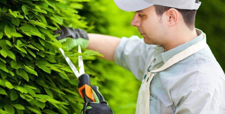 seguro rc jardinero